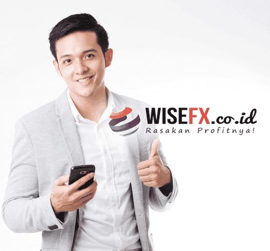 Wisefx